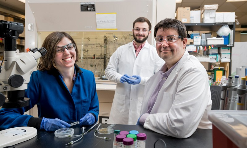 UD's Jason Gleghorn Receives NSF Career Award